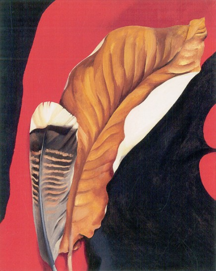 turkey-feather